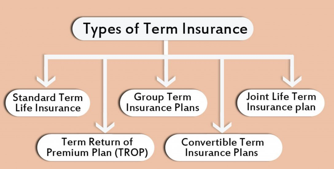 Points to consider about Term Plan life insurance..!