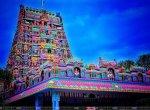 `கோயில்களில் ஆன்லைன் புக்கிங்' - அறநிலையத்துறையோடு கைகோக்கும் 'தேசிய தகவல் மையம்'! #VikatanBreaks