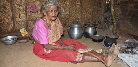 வயது 105... வாழ்வது காட்டுக்குள்... வியக்கவைக்கும் காணி பழங்குடி பாட்டி!