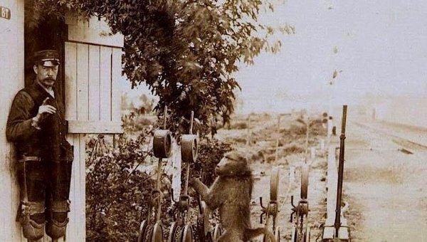 9 ஆண்டுகள் ரயில் நிலையத்தில் சம்பளம் வாங்கிய பபூன் குரங்கு!