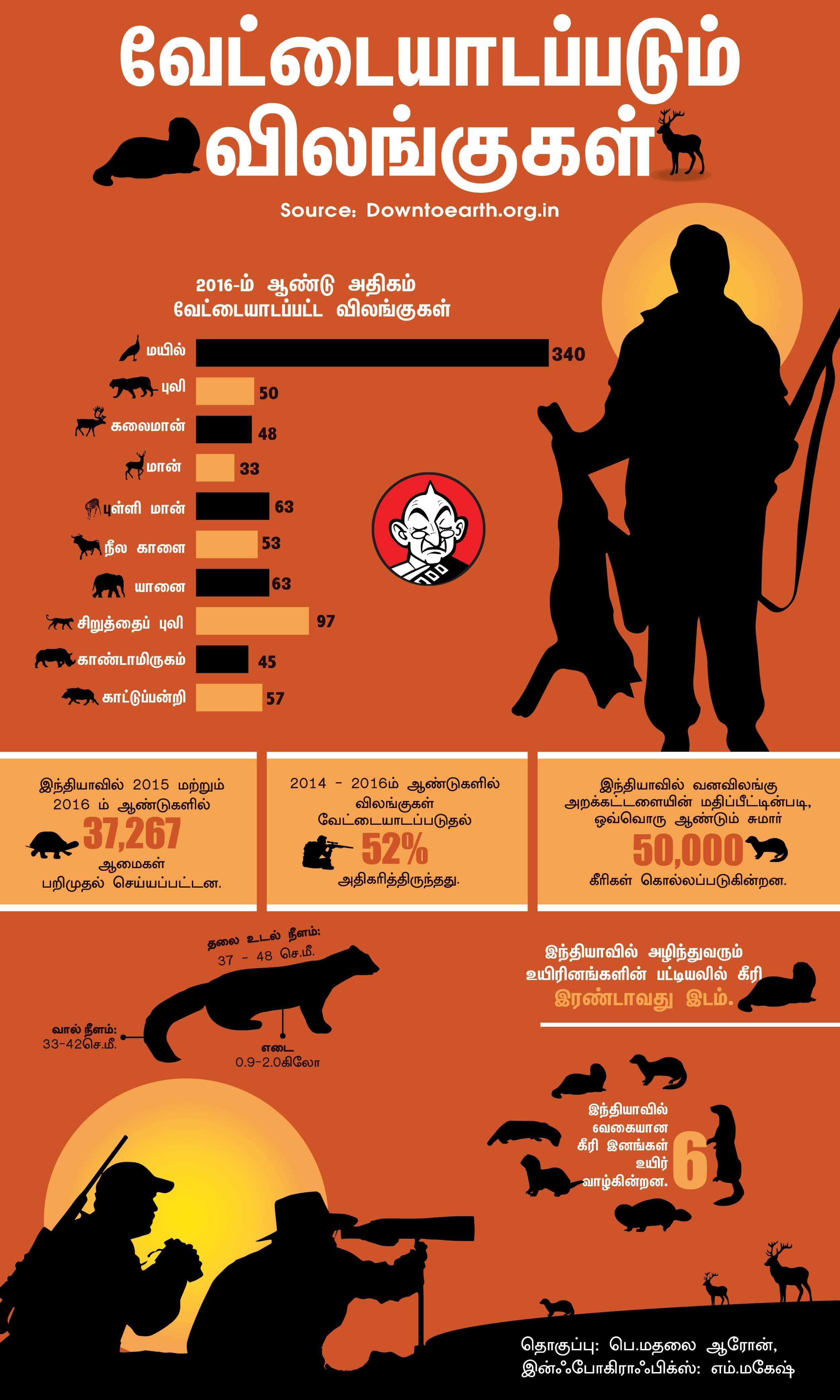 வேட்டையாடப்படும் விலங்குகள் - Vikatan Infographics
