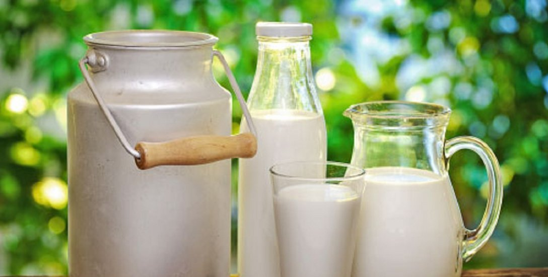 Curd, Buttermilk, Idly... Benefits of Probiotics