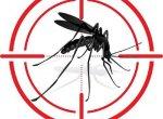 ஓ பாசிட்டிவ் பிடிக்கும், கார்பன் டை ஆக்ஸைடு மோப்பம் பிடிக்கும்... ஏடிஸ் கொசுக்களின் குணங்கள்! #Wolbachia #Dengue