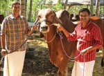 50,000 litres of Milk Annually… Rs 50 Lakhs Income... Graduates' Marvellous Milk Farm!