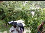 `இன்னும் மீட்புக்குழுவினர் வரவில்லை!' - `கஜா' பாதிப்பால் களமிறங்கிய இளைஞர்கள்