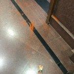 `முதலமைச்சருக்கே பாதுகாப்பில்லை!' - டெல்லி முதல்வர் கெஜ்ரிவால் மீது மிளகாய்ப்பொடி வீச்சு