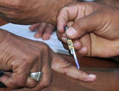 கேரளா உள்ளாட்சித் தேர்தல்