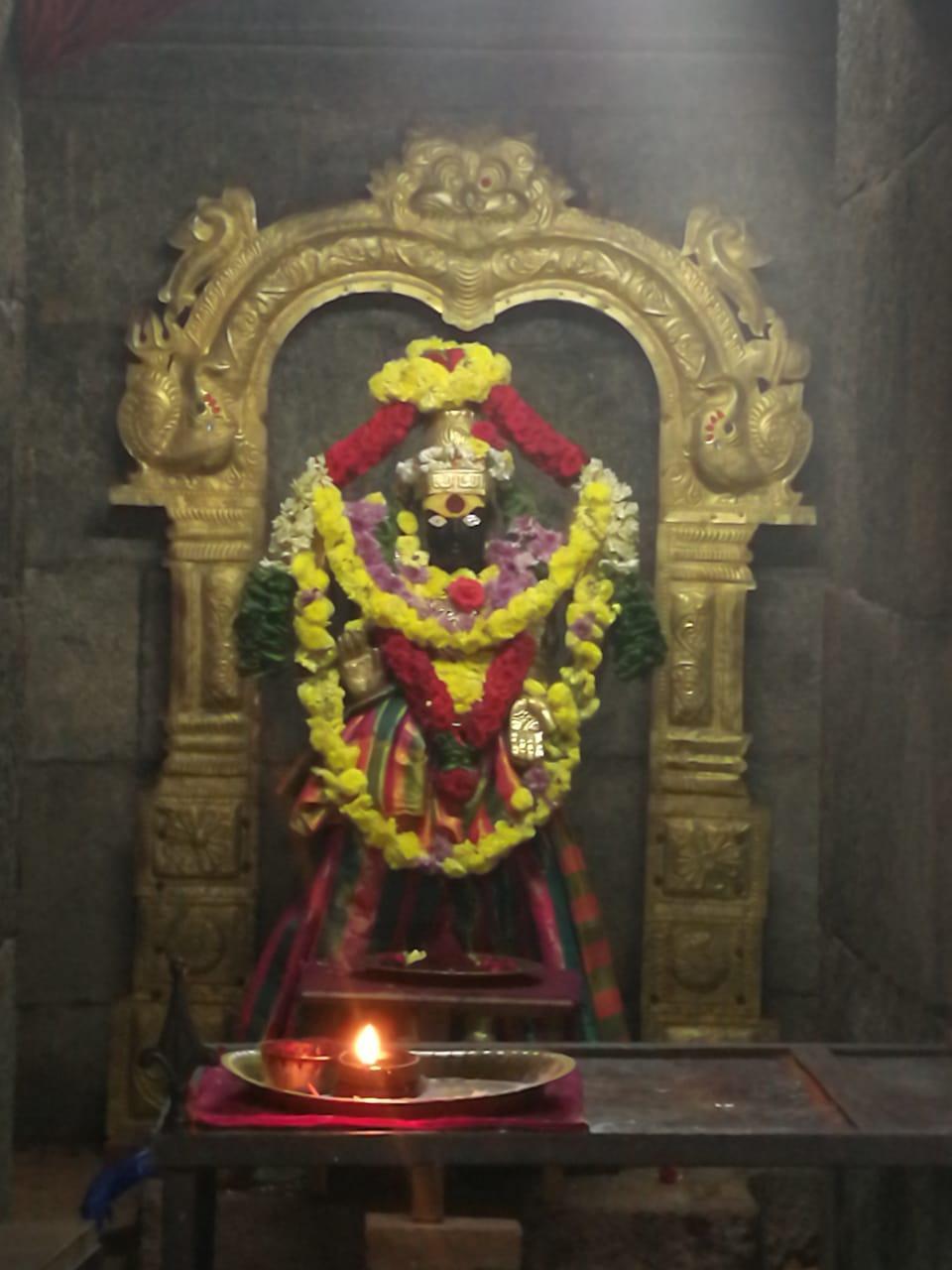 ஆனந்த வல்லி