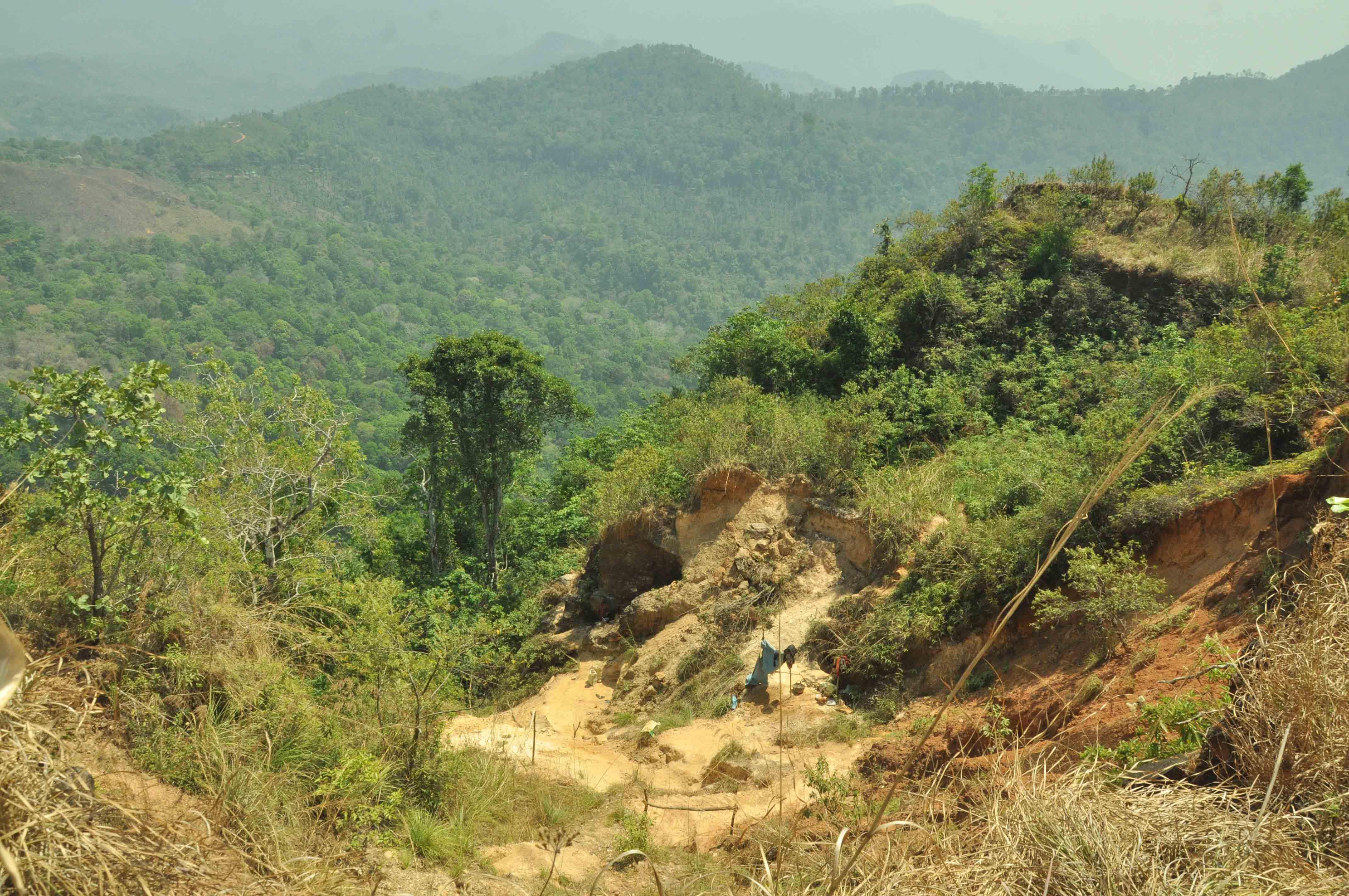 நீலகிரி மலைகள்