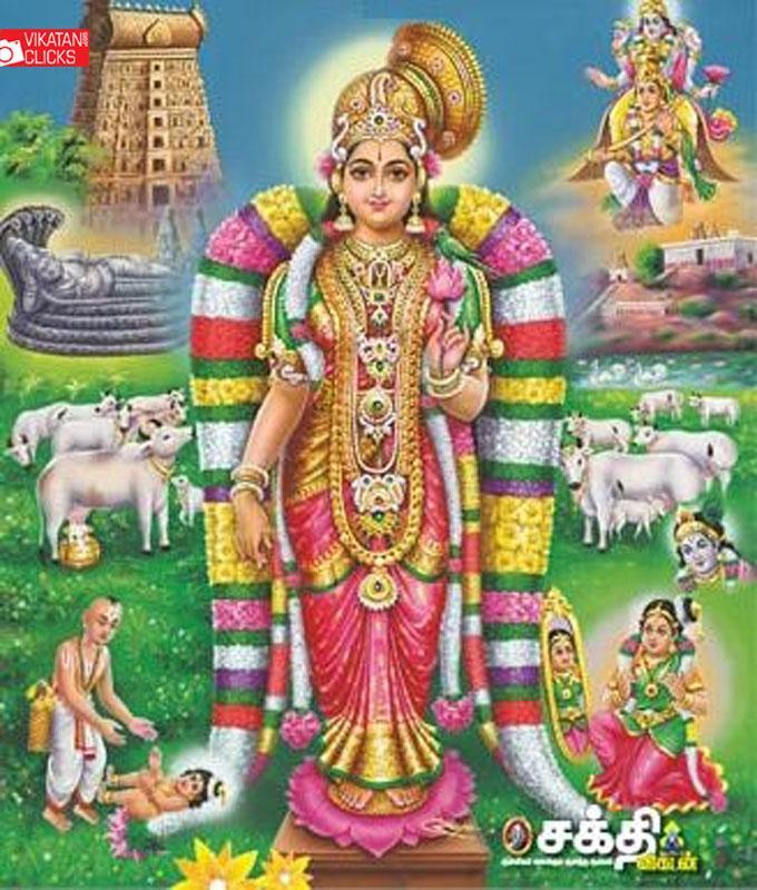 கூடார வல்லி