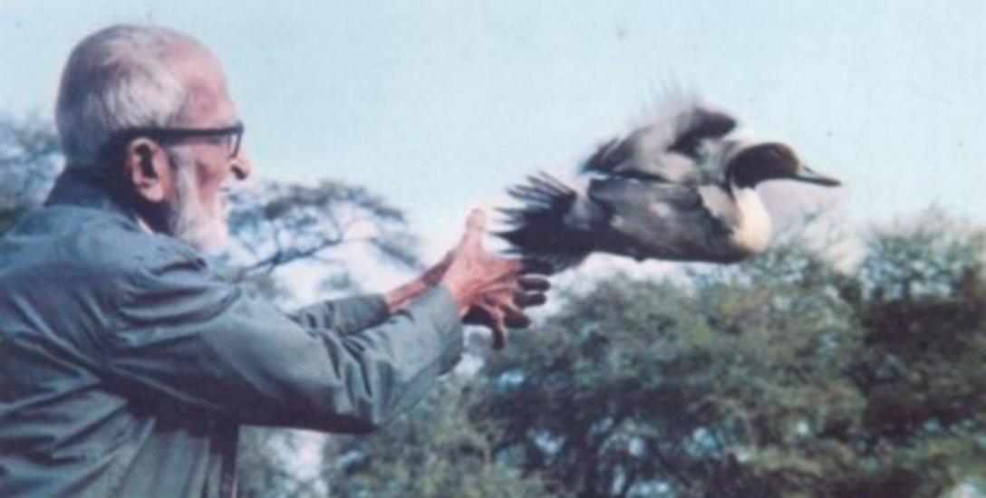 `அந்தச் சிறு பறவையின் கதறலும், நியாயமும்தான் சலீம் அலி!'... நிஜ 'பக்ஷிராஜனின்' கதை