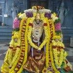 வடரெங்கம் ரெங்கநாதர் கோயில் சொர்க்கவாசல் திறப்பு!
