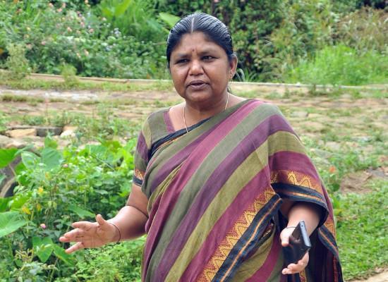 பாலபாரதி