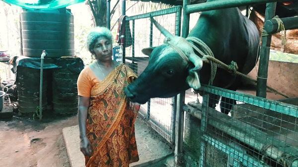 நாகராஜா விற்கு உத்தரவு போடும் விநோதப் பெண் மணியம்மை