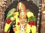 அம்மன் சிலைமீது அமர்ந்த 'கோபக்கார' கிளி! -பாசப் போராட்டம் நடத்தும் உரிமையாளர்