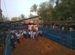 691 காளைகள்... 594 வீரர்கள்... தொடங்கியது அவனியாபுரம் ஜல்லிக்கட்டு!