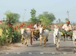 42 ஆண்டுகளாக நடந்த ரேக்ளா ரேஸ்க்கு அனுமதி மறுப்பு! - திருக்கடையூரில்  தடையை மீறி போட்டி நடக்குமா?