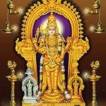 திருச்செந்தூரில் தைப்பூசம் -அதிகாலை 3 மணிக்கு நடை திறப்பு!
