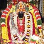 172-வது தியாகராஜர் ஆராதனை விழா ஜனவரி 21-ல் தொடங்குகிறது!