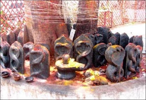 ராகு கேது கோயில்