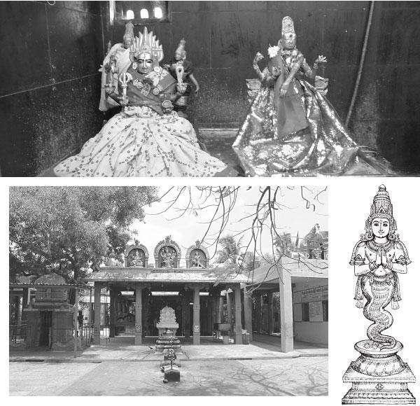 ராகு பகவான் கோயில்
