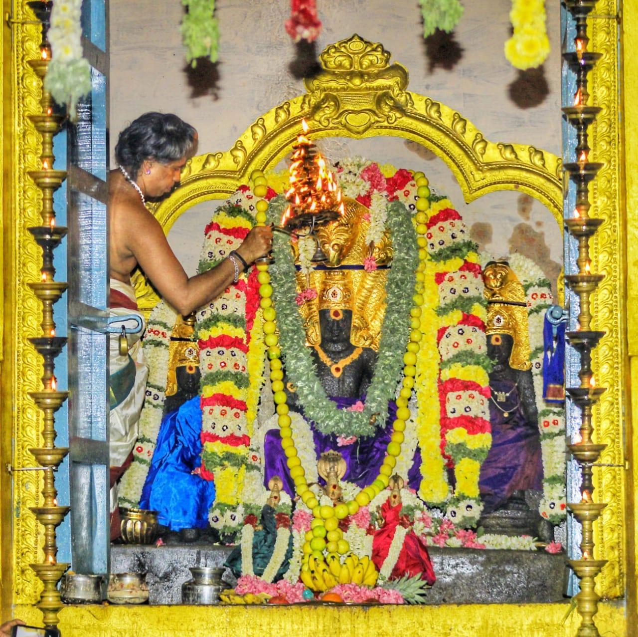 திருநாகேஸ்வரம் ஸ்ரீநாகநாதசுவாமி