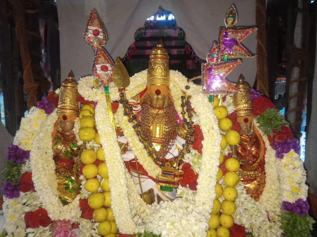 மாசித் தேரோட்டம்