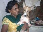 25 கிலோ சாதம்... தினம் சிக்கன்... தெரு நாய்களைக் கொஞ்சி வளர்க்கும் கலா!
