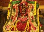 கோலாகலமாக நடைபெற்ற சுவேதாரண்யேசுவரர் - பிரம்மவித்யாம்பிகை திருக்கல்யாண வைபவம்