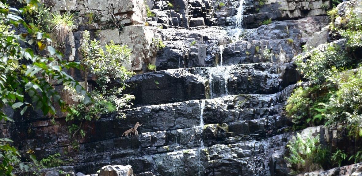 கோடை காலத்தில் தலக்கோனாவில் தண்ணீர் ரொம்பவே குறைவு