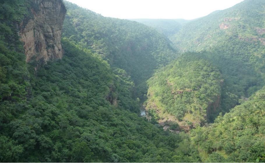 தலகோனாவுக்கு அருகில் இருக்கும் வெங்கடேஷ்வரா நேஷனல் பார்க்