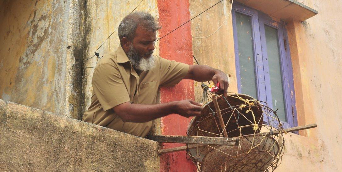 பறவைகளைக் காண தினமும் 30 கி.மீ பயணிக்கும் சிட்டுக்குருவி காதலன் அஜிஸ்! #WorldSparrowDay