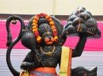 16 தெய்வத் திருமணங்கள்... ஆரோக்கியம் அருளும் தன்வந்திரி பீட திருவிழா!