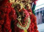 `கபாலி... கபாலி...' - விழாக்கோலமான மயிலையில் அறுபத்து மூவர்...