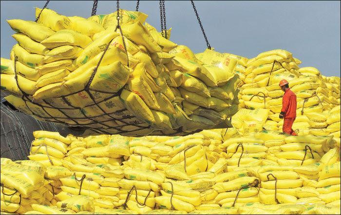 Agri export