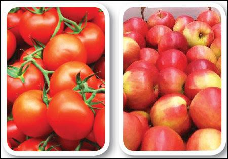 Fruits for agri export