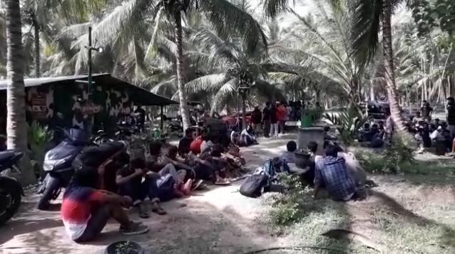 பொள்ளாச்சி போதை பயங்கரம் 163 இளைஞர்கள் கைது