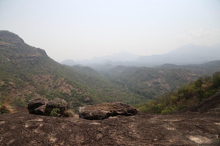 சின்னார் காடு