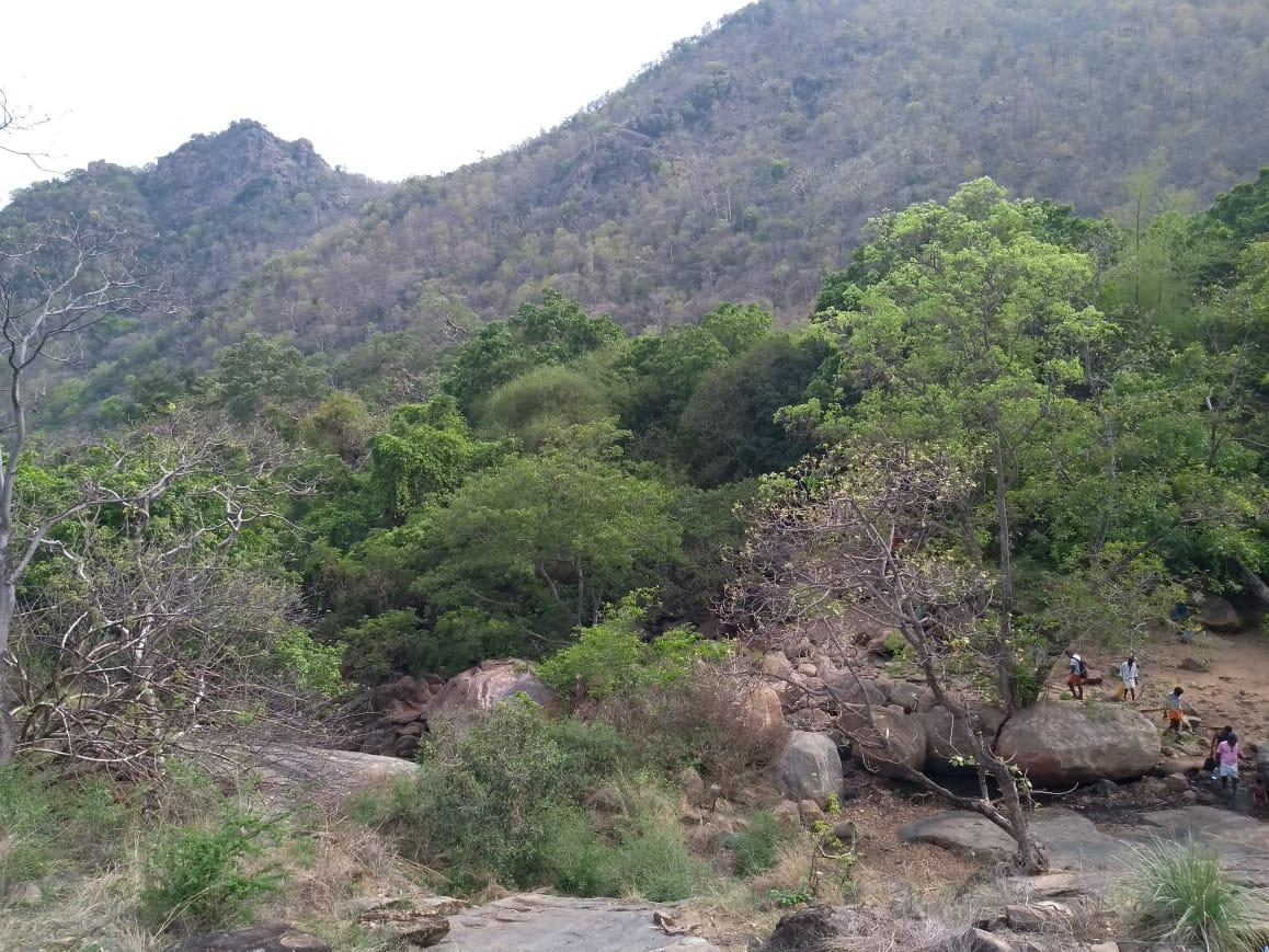 சதுரகிரி