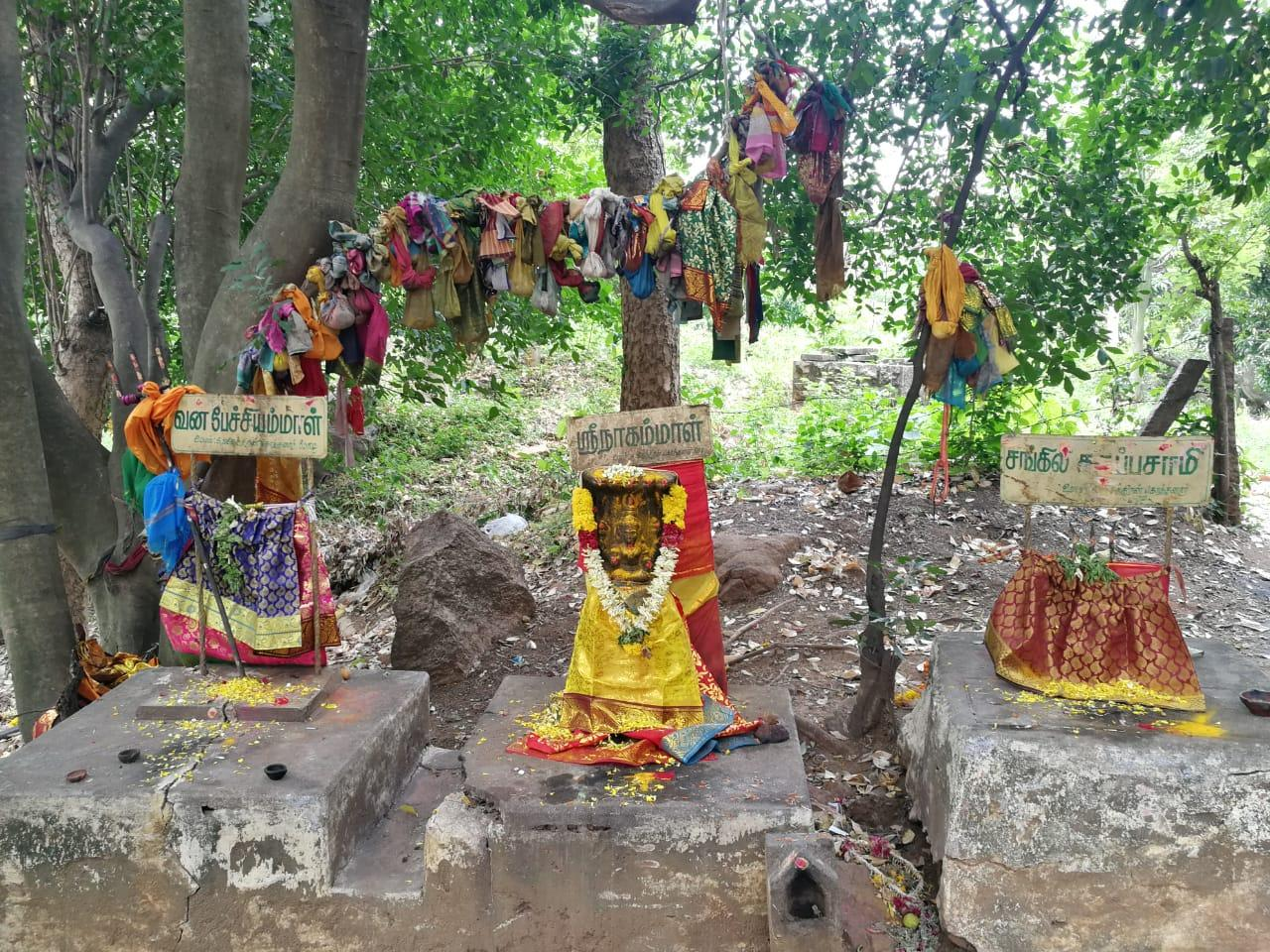 கொம்புதூக்கி அய்யனார் கோயில்