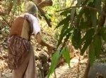 `என்னை முட்டாள், பைத்தியம் என்கிறார்கள்!'- மின்சாரமின்றி 79 ஆண்டுகளாக வாழும் பேராசிரியை