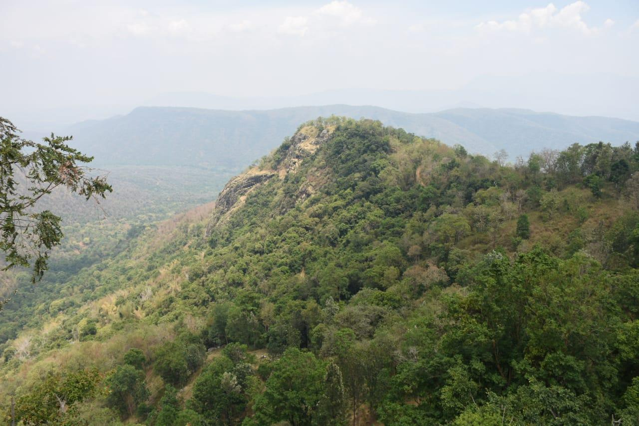 நீலகிரி