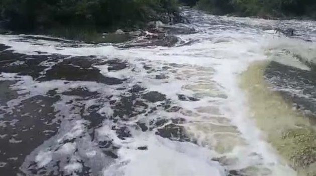நொய்யல் ஆற்றில் சாயக்கழிவு