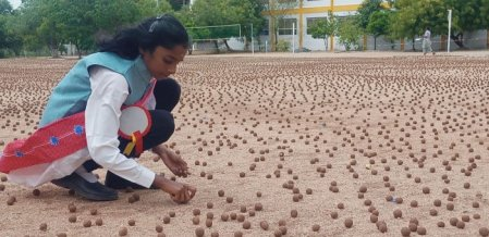 `கன்னியாகுமரி டு காஷ்மீர் வரை 4 லட்சம் விதைப்பந்துகள்!' - கரூர் சிறுமியின் அசத்தல் முயற்சி