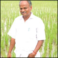 ஏக்கருக்கு ரூ.65 ஆயிரம்... சீரகச்சம்பா, ஆத்தூர் கிச்சிலிச்சம்பா, தூயமல்லி...