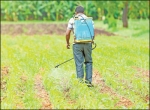 இயற்கை பூச்சி விரட்டி 'இ.எம்-5' - உதவிக்கு வரும் உயிரியல் - 14