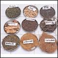 டெங்கு மட்டுமல்ல... 64 வகை காய்ச்சல்களுக்கும் நிலவேம்புக் குடிநீர்!