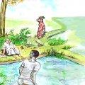 மரத்தடி மாநாடு : சீமைக்கருவேல மரத்தால்  பாதிப்பு கிடையாது!