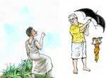 மரத்தடி மாநாடு: உச்சத்தில் சோளம்...  சரிவில் மக்காச்சோளம்!
