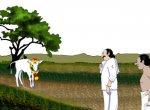 மண்புழு மன்னாரு: நீரோட்டம் காட்டிய பசுங்கன்றும் பால் சுரக்கும் சுரைக்காயும்!